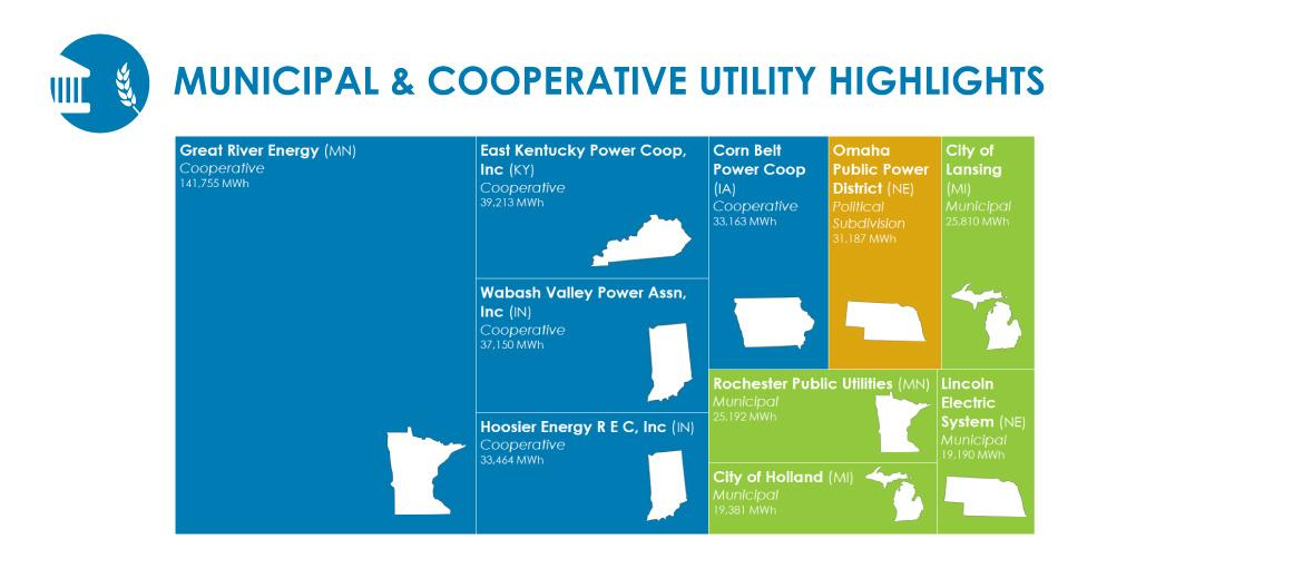 municipal and cooperative utilities